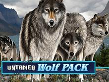 Волчья Стая – игровой аппарат Вулкан